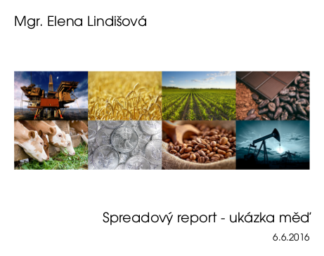 report_ukazka_icon